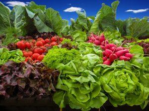 La inflación preocupa a los productores de Plottier y Senillosa
