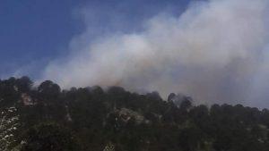 Un incendio en Ruca Choroi consumió más de 80 hectáreas